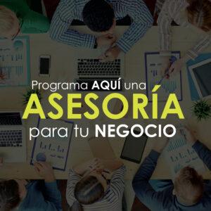ASESORIA-14